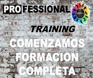 PROfessional Training – Curso 2020-21